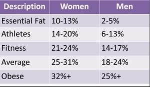 Percentagem massa gorda ideal nas mulheres e homens